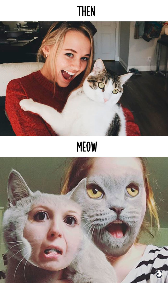 Cats-then-now-funny-technology-change-life-12-57161e85847ed__700